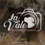 La Vale Dog Photography